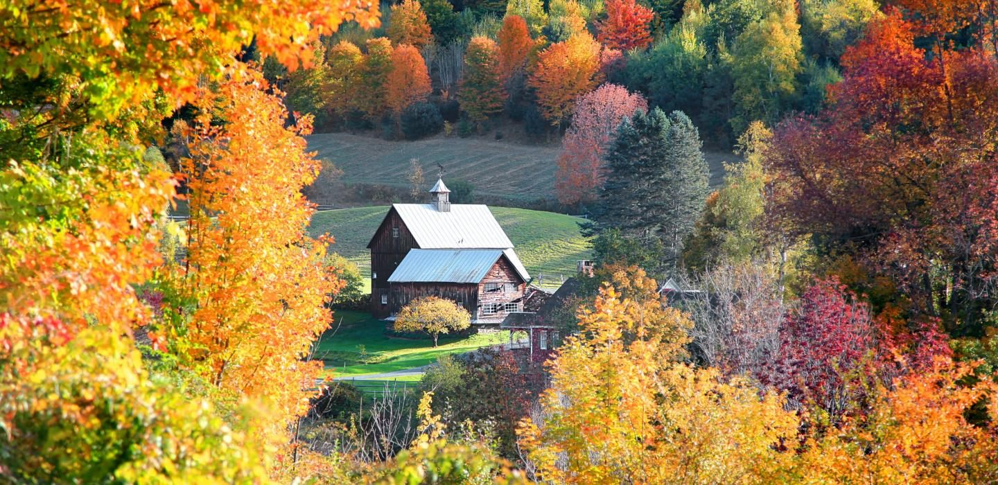 A secluded farmhouse in the calm woods of Vermont.