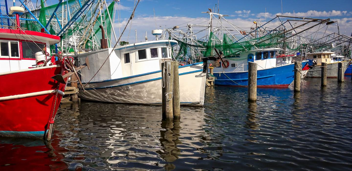 Fishing boats in the marina in Mississippi.
