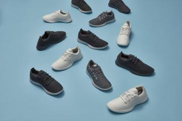 several examples of Allbirds sneakers